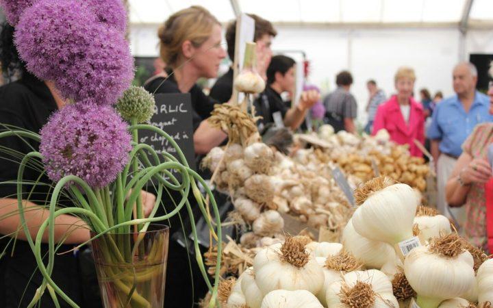 IOW Garlic Festival