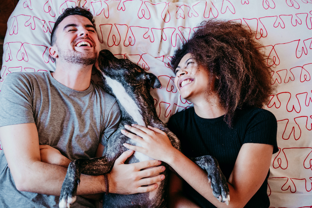 The Pet Effect: man and woman in bed laughing with pet dog