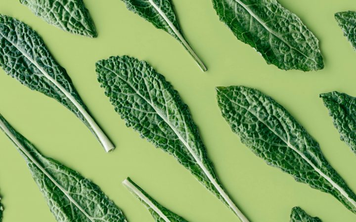 vegetable leaves laid out
