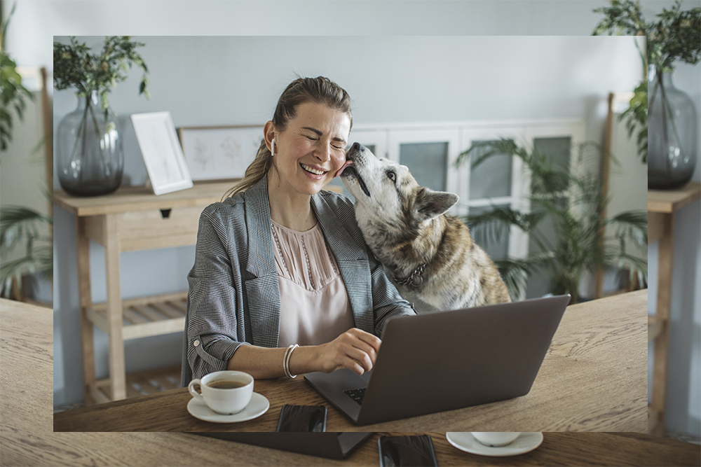 Woman working from home with her dog