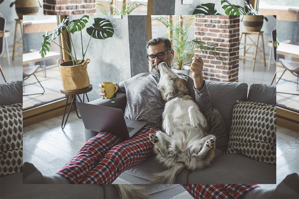 Man working from home with his dog