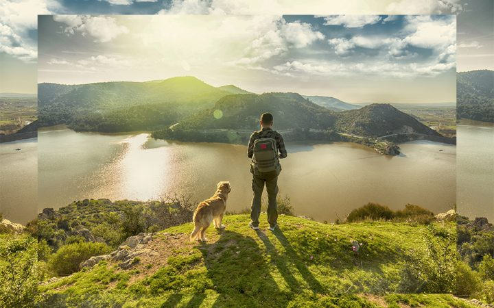 Man with dog walking on top of mountain top