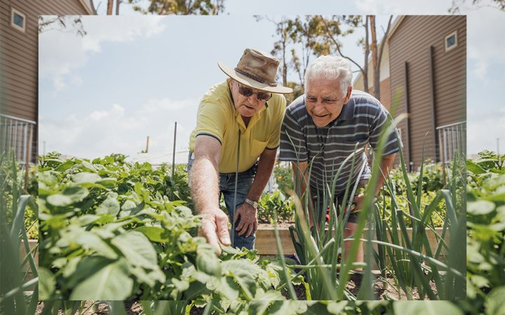 man and woman looking at vegetables growing outside
