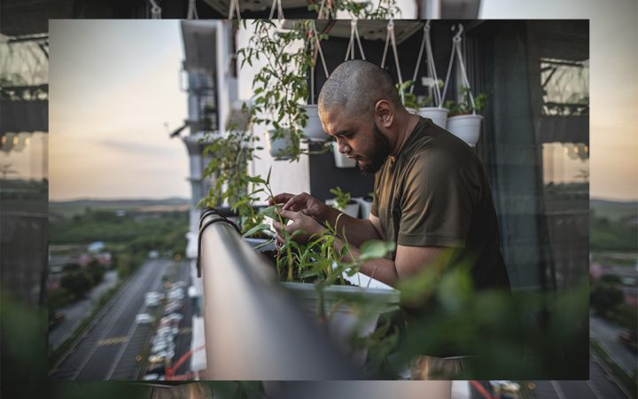 Man caring for plants